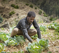 £100 could help families grow fruit and veg on dry, arid land